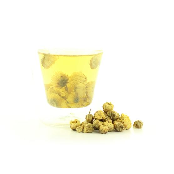 chrysanthème royale