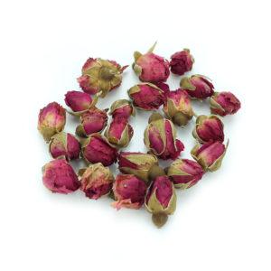 fleurs de rose chinoise